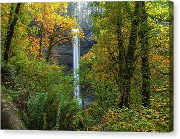 Leaf Peeping And Waterfall Canvas Print by David Gn