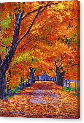 Leafy Lane Canvas Print by David Lloyd Glover