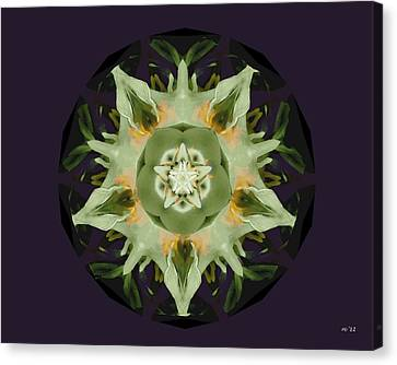 Leafy Mandala Canvas Print by Rene Crystal