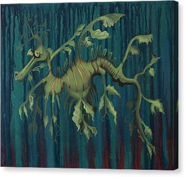 Leafy Sea Dragon Canvas Print by Kelly Jade King