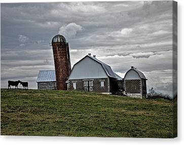 Canvas Print featuring the photograph Lean On Me by Robert Geary