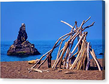 Sonoma Coast Canvas Print - Lean To On Beach Shore by Garry Gay