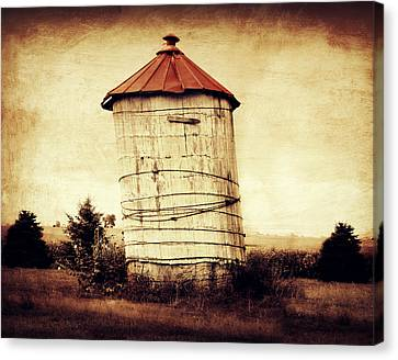 Leaning Tower Canvas Print by Julie Hamilton