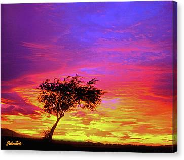 Leaning Tree At Sunset Canvas Print