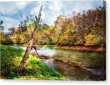 Smokey Mountain Drive Canvas Print - Leaning Tree by Debra and Dave Vanderlaan