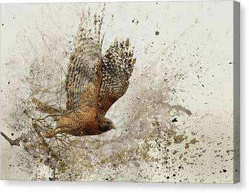 Leap Of Faith Wildlife Art Canvas Print