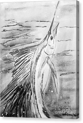 Leaping Sailfish - Black And White Canvas Print by Scott D Van Osdol