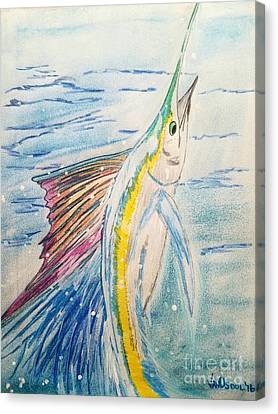 Leaping Sailfish - Original Colored Pencil Canvas Print by Scott D Van Osdol