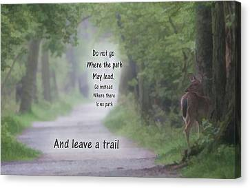 Leave A Trail Canvas Print by Dan Sproul
