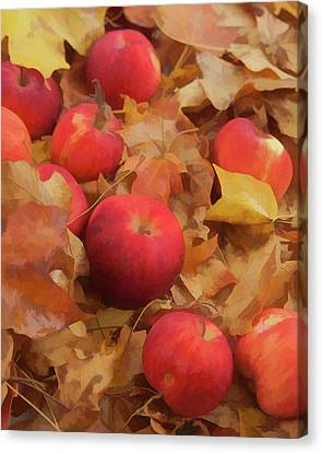 Canvas Print featuring the photograph Leaves And Apples by Michael Flood