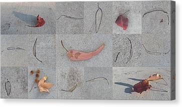 Canvas Print featuring the photograph Leaves And Cracks Collage by Ben and Raisa Gertsberg