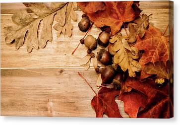 Canvas Print featuring the photograph Leaves And Nuts 1 by Rebecca Cozart