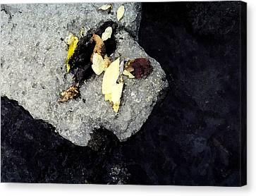Canvas Print featuring the photograph Leaves On The Rocks by Lyle Crump