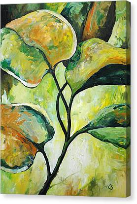 Nature Study Canvas Print - Leaves2 by Chris Steinken