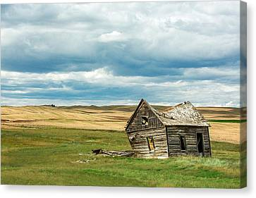 Leaving Home Canvas Print by Todd Klassy