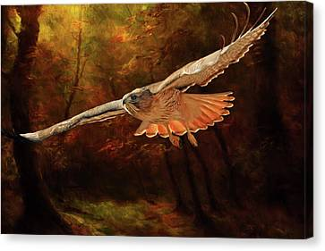 Hawk Canvas Print - Leaving The Enchanting Forest by Donna Kennedy