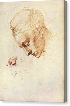 Leda's Head, Study Canvas Print by Michelangelo Buonarroti