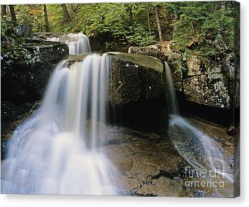 Ledge Brook - White Mountains New Hampshire Usa Canvas Print by Erin Paul Donovan