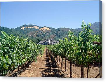 Ledson Winery And Vineyard Sonoma County California Canvas Print by George Oze