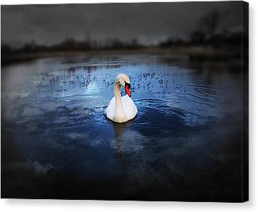 Left Behind Canvas Print by Svetlana Sewell