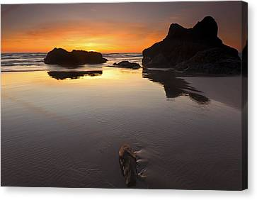 Left By The Tides Canvas Print by Mike  Dawson
