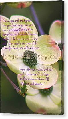 Legend Of The Dogwood Canvas Print by ARTography by Pamela Smale Williams