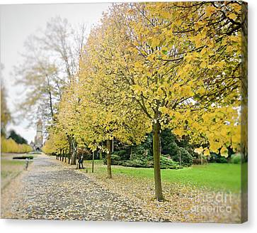 Canvas Print featuring the photograph Leipzig Memorial Park In Autumn by Ivy Ho