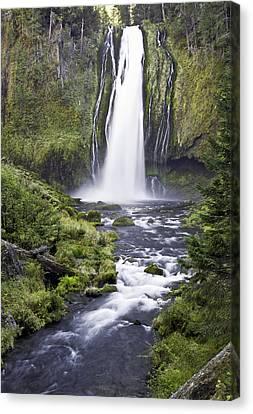 Lemolo Falls Canvas Print