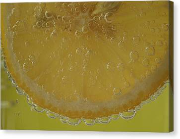 Lemon Bubbles Canvas Print by Christine Amstutz