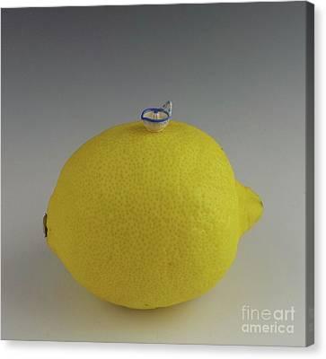 Lemon Juicer Canvas Print by David Bearden