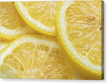 Lemon Slices Number 3 Canvas Print by Steve Gadomski