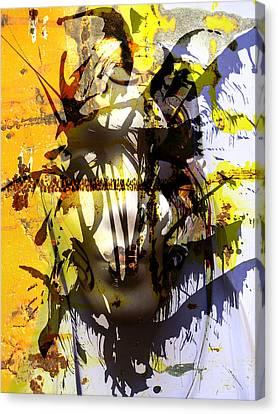 Lemon To Wounds  Canvas Print