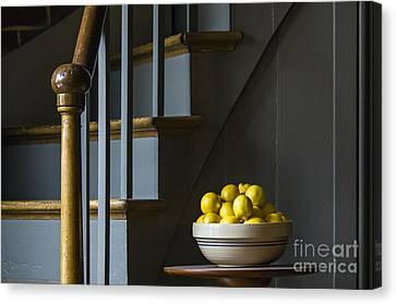 Lemons - D009753 Canvas Print by Daniel Dempster