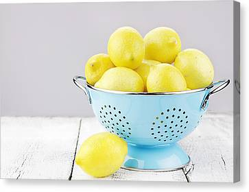Lemons Canvas Print by Stephanie Frey