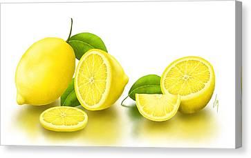 Lemons-white Canvas Print by Veronica Minozzi