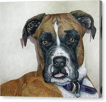 Lennox Canvas Print by Beverly Fuqua