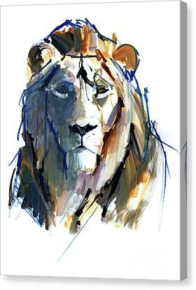 Growl Canvas Print - Leo by Mark Adlington