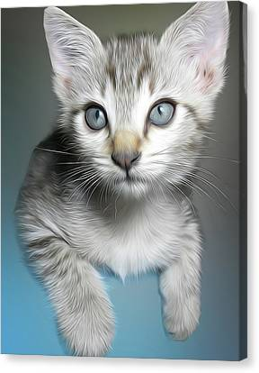 Leo The Cat Canvas Print