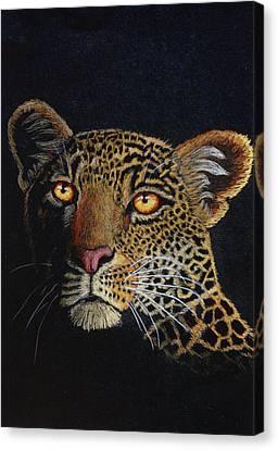 Leopard In The Dark Canvas Print by Lorraine Foster