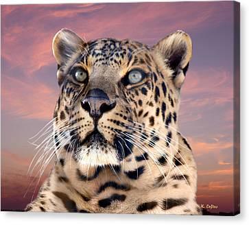 Leopard Portrait Number 3 Canvas Print