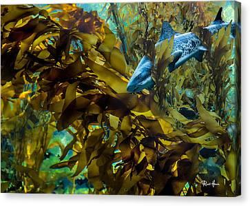 Leopard Shark Canvas Print by Russ Harris