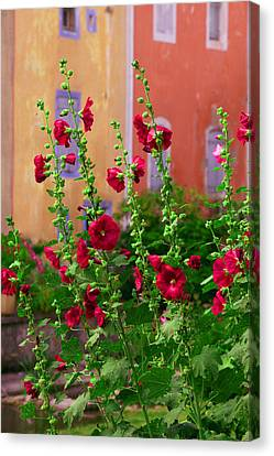 Les Fleurs Rouge Canvas Print