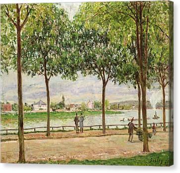 Les Promenade Des Marronniers Canvas Print by Alfred Sisley