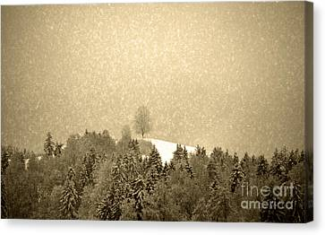 Canvas Print featuring the photograph Let It Snow - Winter In Switzerland by Susanne Van Hulst