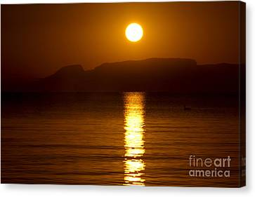 Let The Rays Shine Through Him Canvas Print by James Brown