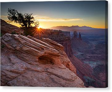 Canvas Print featuring the photograph Let There Be Light by Dan Mihai