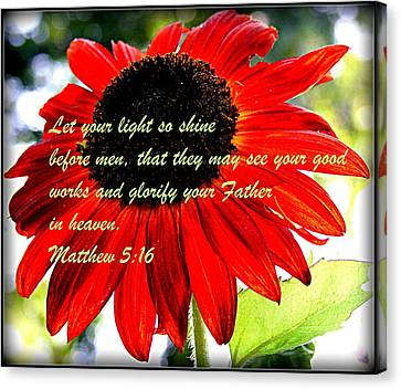 Let Your Light So Shine Canvas Print by Robert Babler