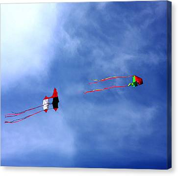 Let's Go Fly 2 Kites Canvas Print