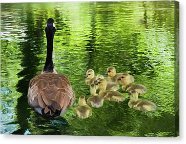 Let's Go Kids Canvas Print by Donna Kennedy