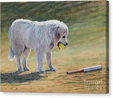 Let's Play Ball - Great Pyrenees Canvas Print by Danielle Smith